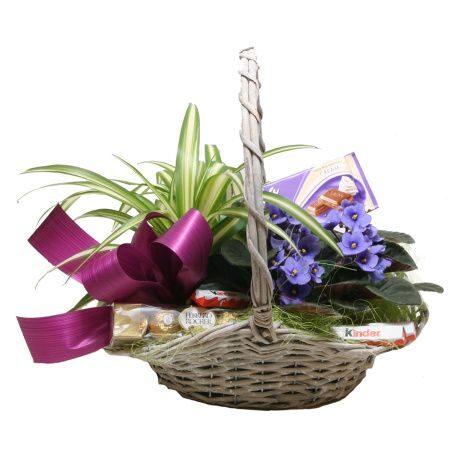 Květinové a dárkové koše, kytice netradiční