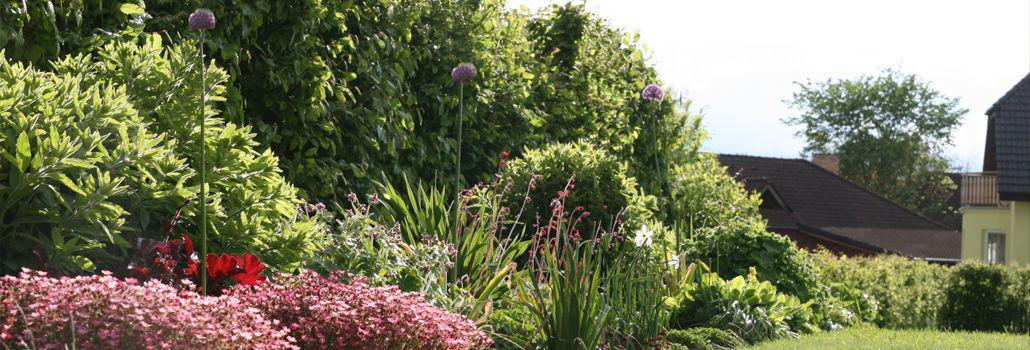 projekce zahrad 1