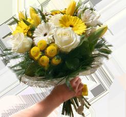 rovoz-květin-písek-LEVÁ